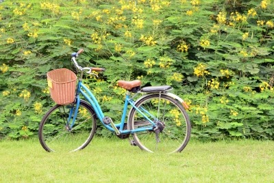 the best thing on two wheels- the bike