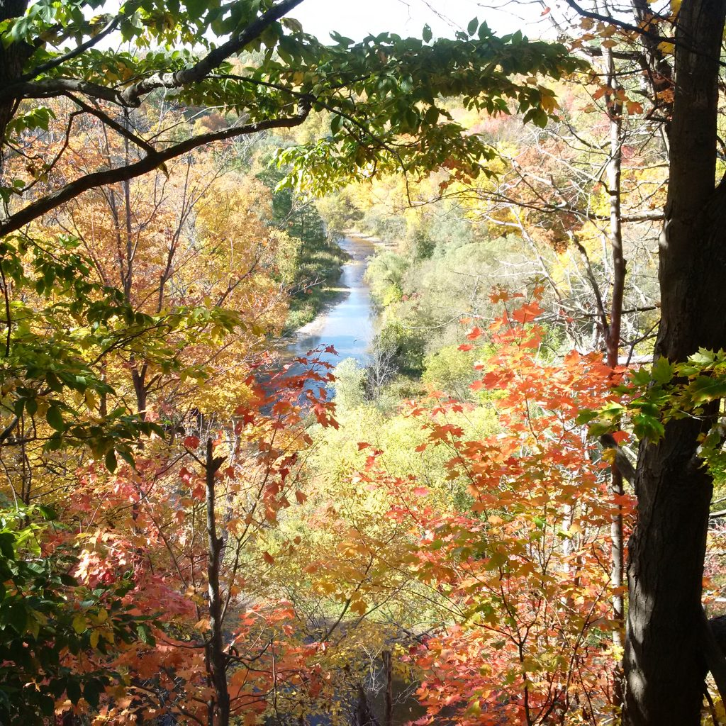 A gorgeous fall landscape taken during our walk