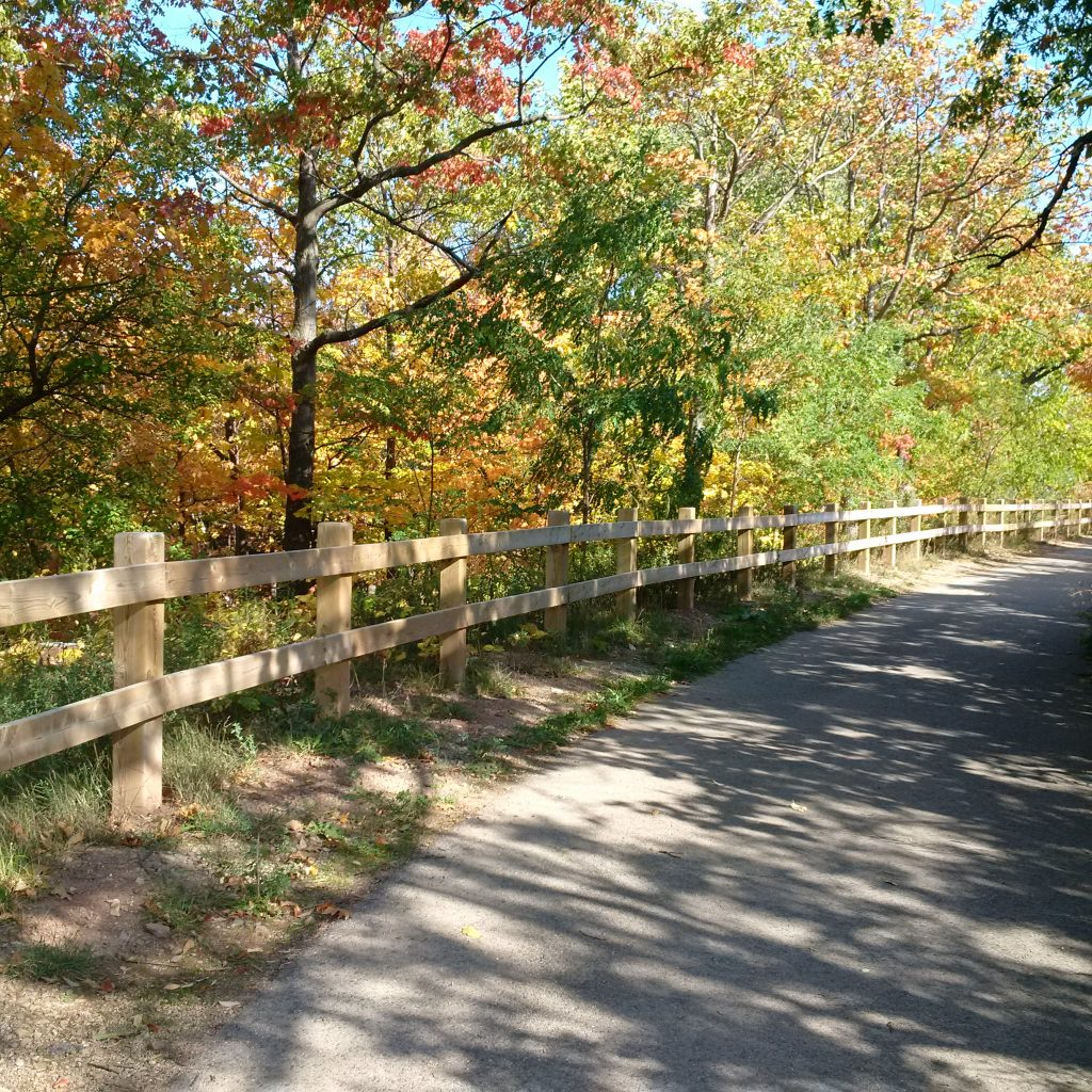 the pathway to our fall walk