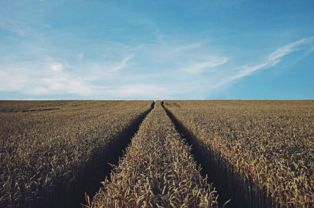 agricultural stocks for your investment portfolio