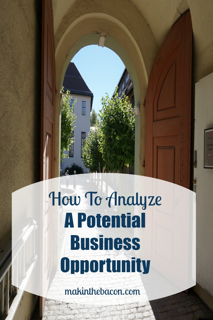 analyzing a potential business opportunity