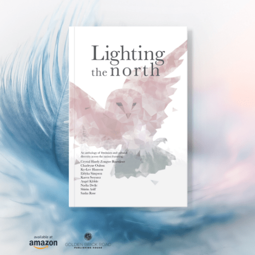 Lighting The North, Pre-Order